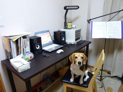 2010-10-30room1.jpg