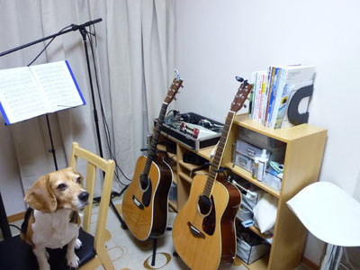 2010-10-30room2.jpg